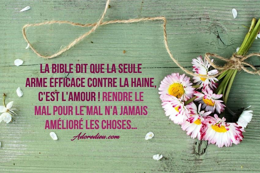 La Bible Dit Que La Seule Arme Efficace Contre La Haine C